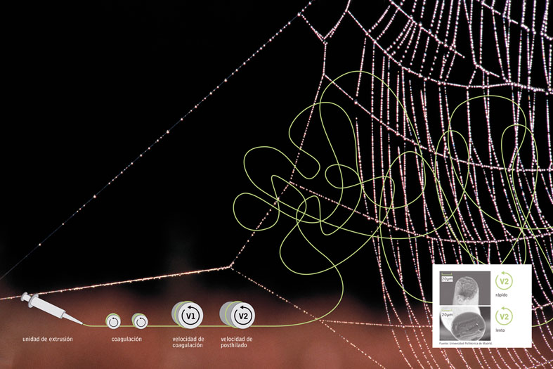 Fibras Bioinspiradas