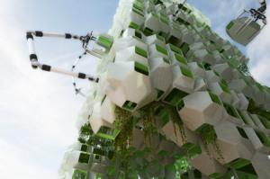 estructura eco 2